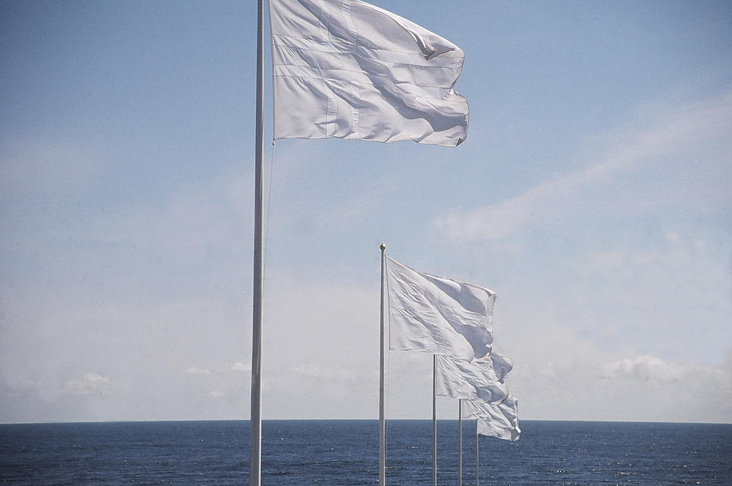 WHITE FLAGS tilleggsbilde